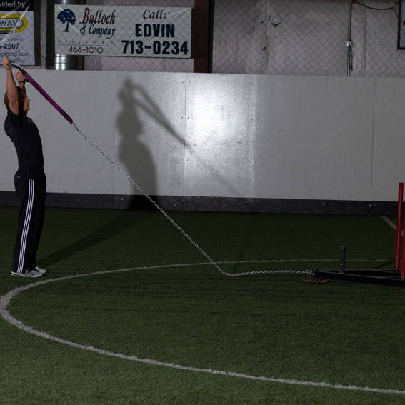 Sled Reverse Flye Exercise Videos Amp Guides