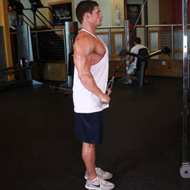 Straight-Arm Pulldown