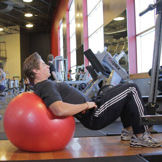Stability Ball Glute Bridge: Glutes Exercises & Exercise Guides