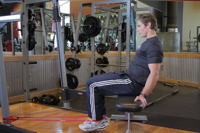 Seated Band Hamstring Curl image