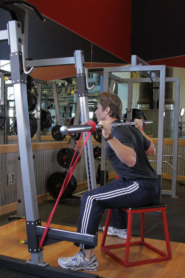 Speed Box Squat image