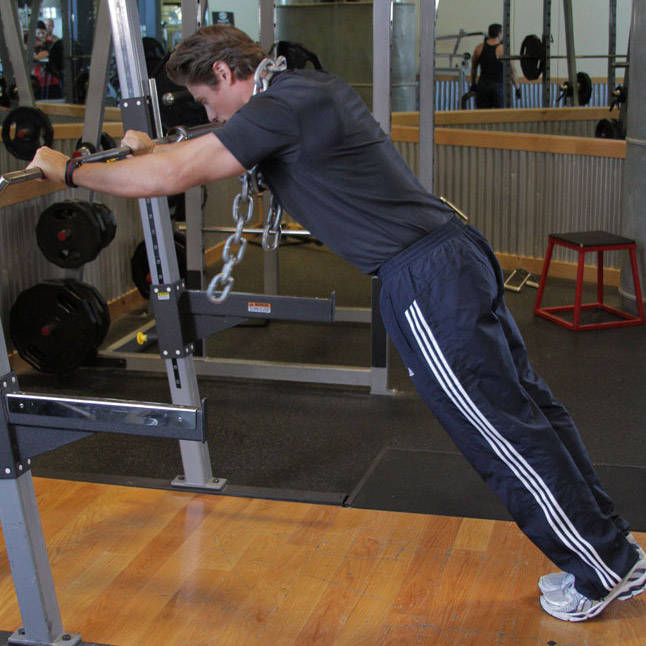 Body triceps press