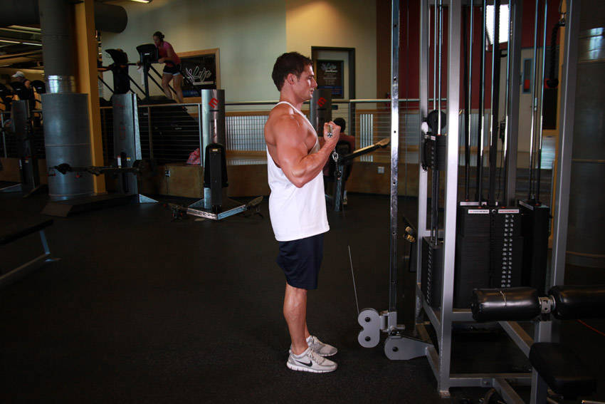 Rope Pulley Curls : Standing biceps cable curl exercise guide and