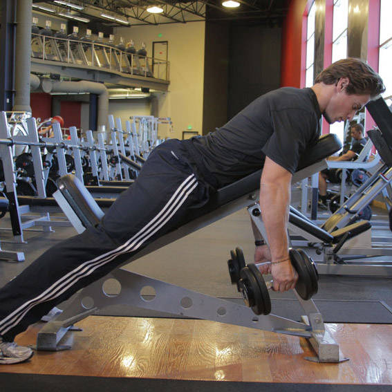 Dumbbell Incline Row