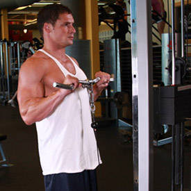 reverse cable curl exercise guide and video