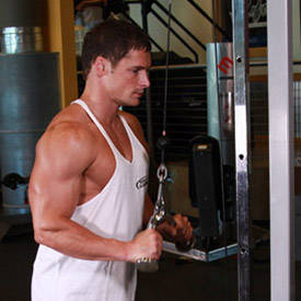 Triceps Pushdown - V-Bar Attachment