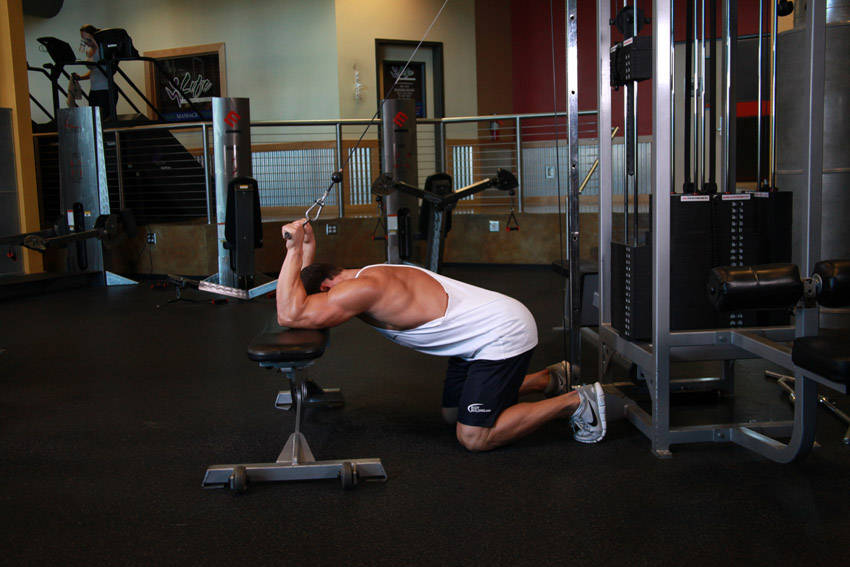 Cable Extensions Workout : Kneeling cable triceps extension exercise guide and video