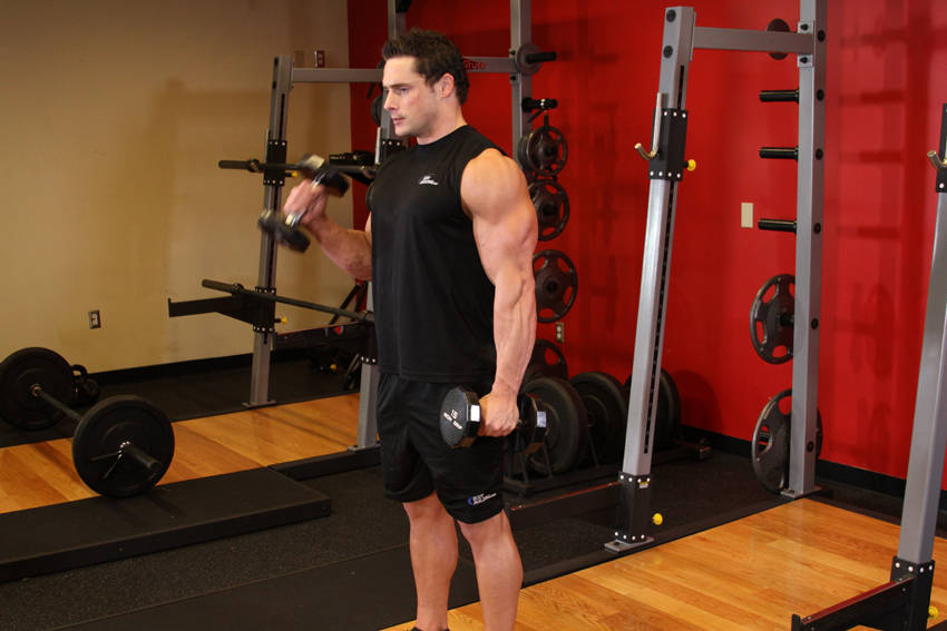 Alternate Hammer Curl Exercise Guide and Video