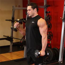 Astounding Bicep Exercises Bicep Workouts Short Hairstyles Gunalazisus
