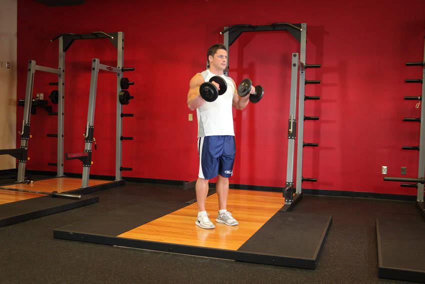 Standing Dumbbell Reverse Curl image
