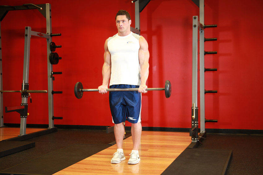 Barbell Curl Exercise Guide and Video