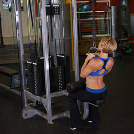 Lat pull-down (V handle)