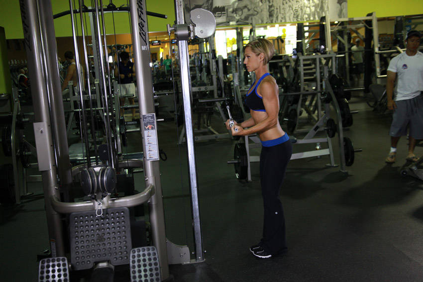 Reverse Grip Triceps Pushdown Exercise Guide and Video