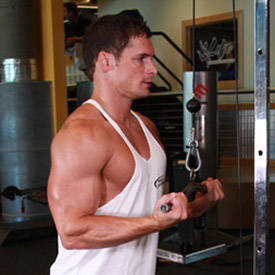 Reverse-Grip Triceps Push-Down