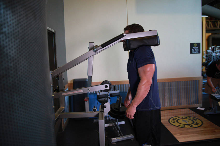 Calf-Machine Shoulder Shrug image