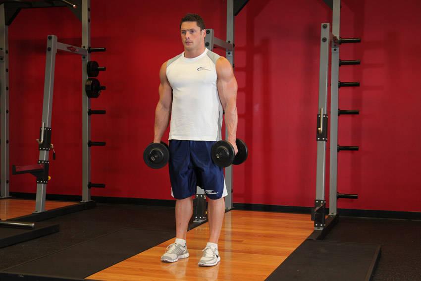Standing Inner-Biceps Curl image
