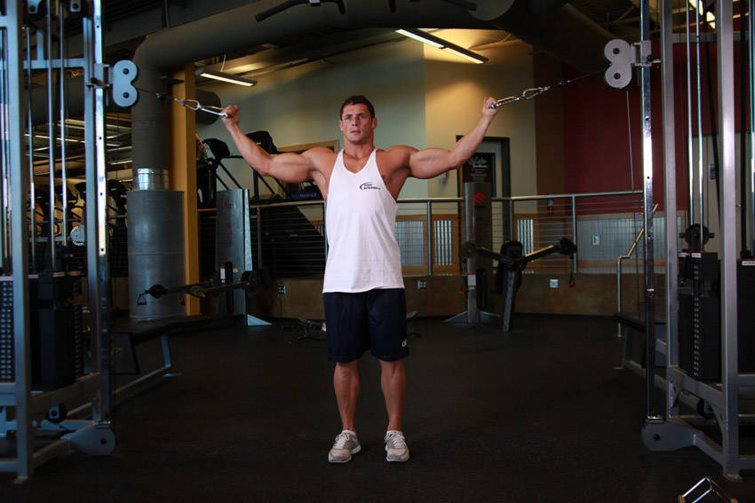 Rope Pulley Curls : I c e program training the biceps
