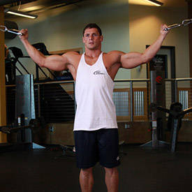 Standing double biceps cable curl