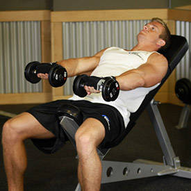 Front Incline Dumbbell Raise image