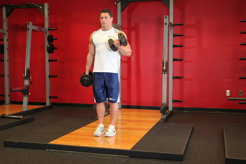 Dumbbell Alternate Bicep Curl Exercise Guide And Video