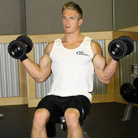 how to get that line on your biceps