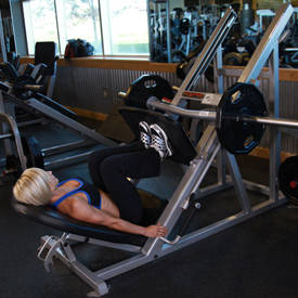 Image result for narrow leg press