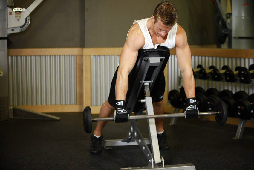 Incline Bench Pull image
