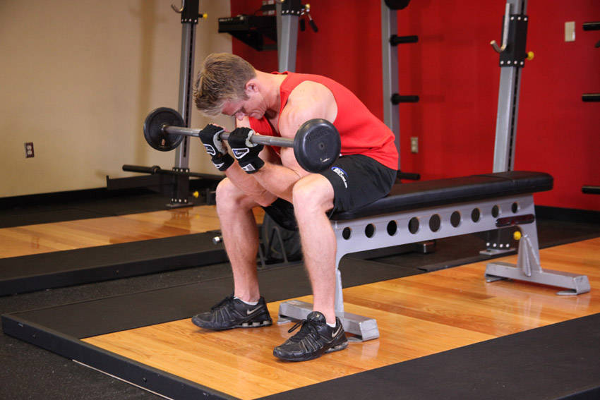 Seated Close-Grip Concentration Barbell Curl image