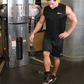 Cable Hip Adduction Exercise Guide and Video