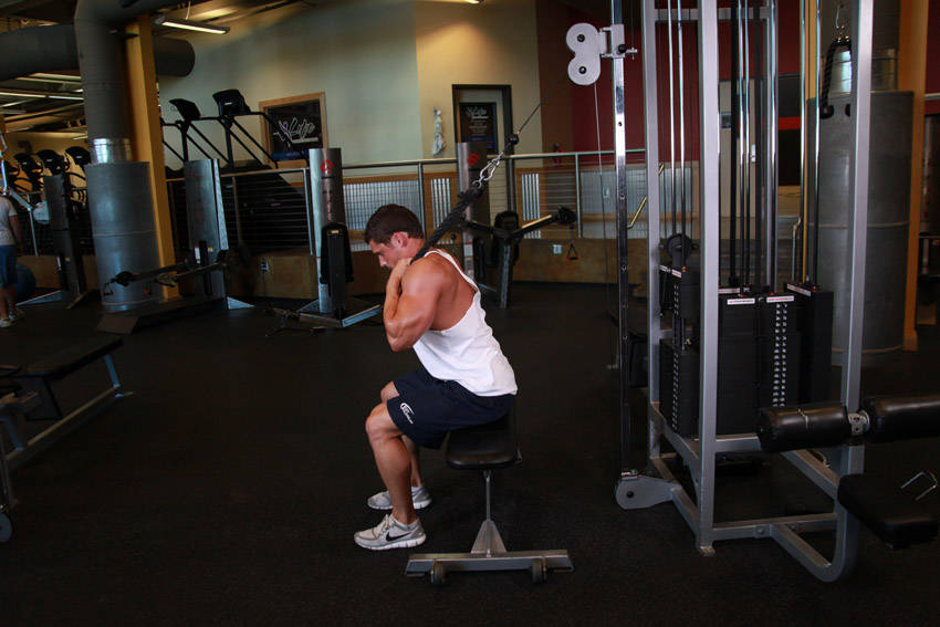 Cable Seated Crunch Exercise Guide And Video