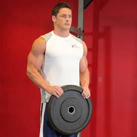 تمارين الذراع عضلة (البايسبس ) 320_1