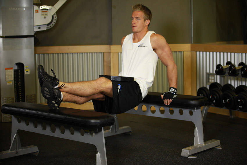 Weighted Bench Dip Exercise Guide And Video