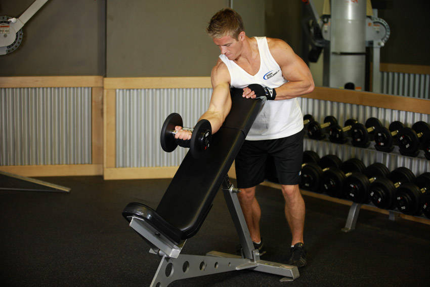 Standing One-Arm Dumbbell Curl Over Incline Bench image