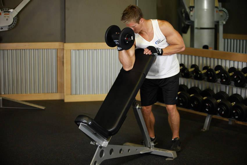 تمارين الذراع عضلة (البايسبس ) 339_2