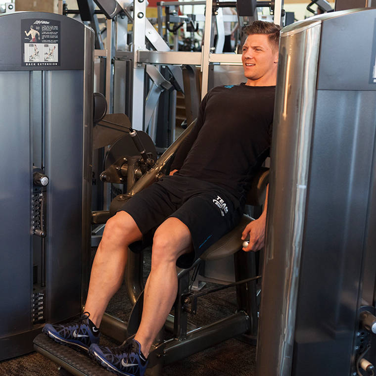 Seated Back Extension image