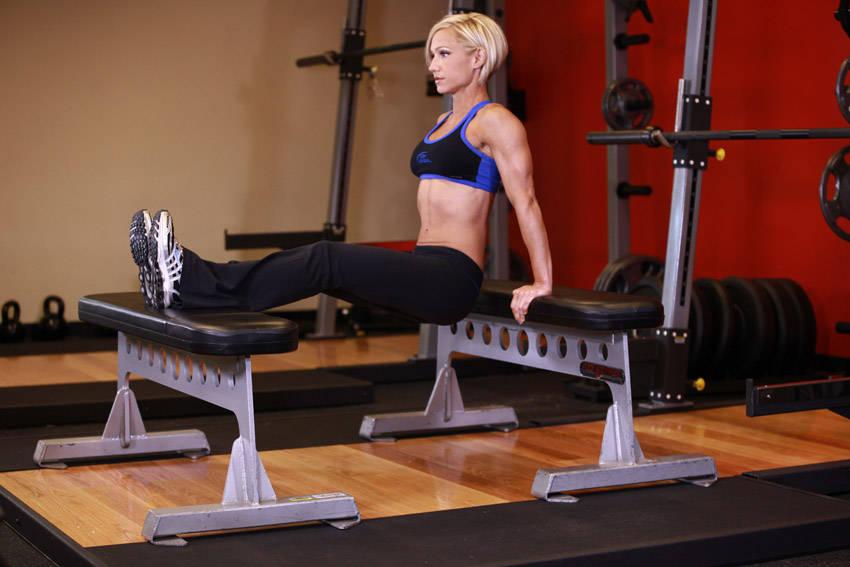 Bench Dips Workout Part - 31: Bench Dips