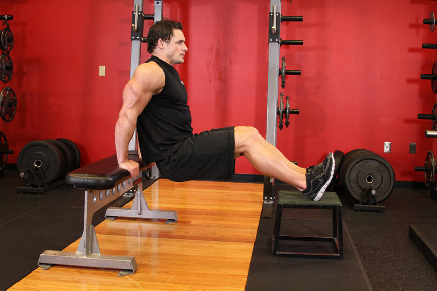 Bench Dips Workout Part - 22: Bench Dips