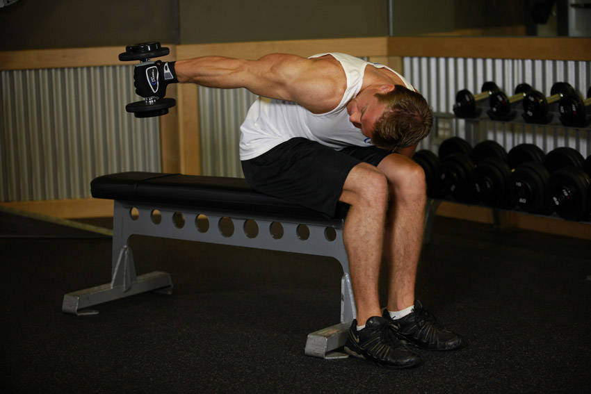 Seated Bent-Over One-Arm Dumbbell Triceps Extension image