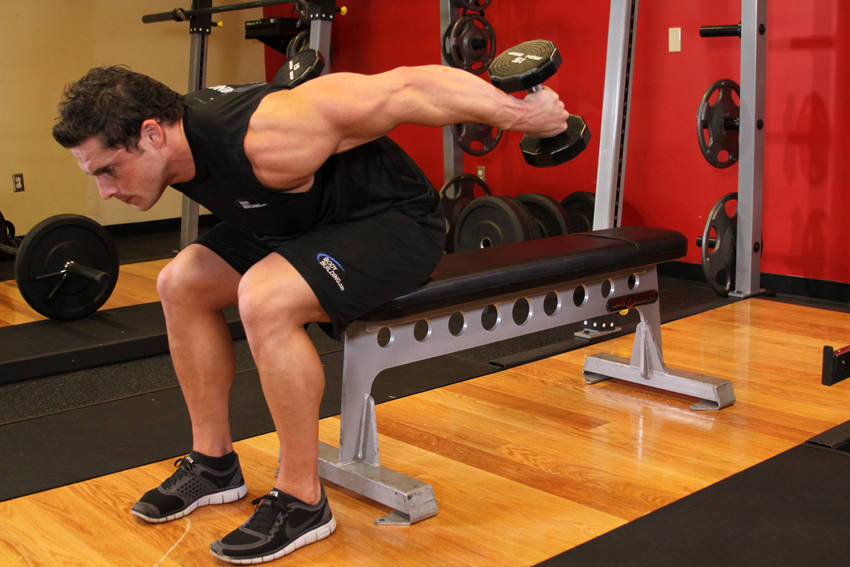 Seated Bent-Over Two-Arm Dumbbell Triceps Extension image