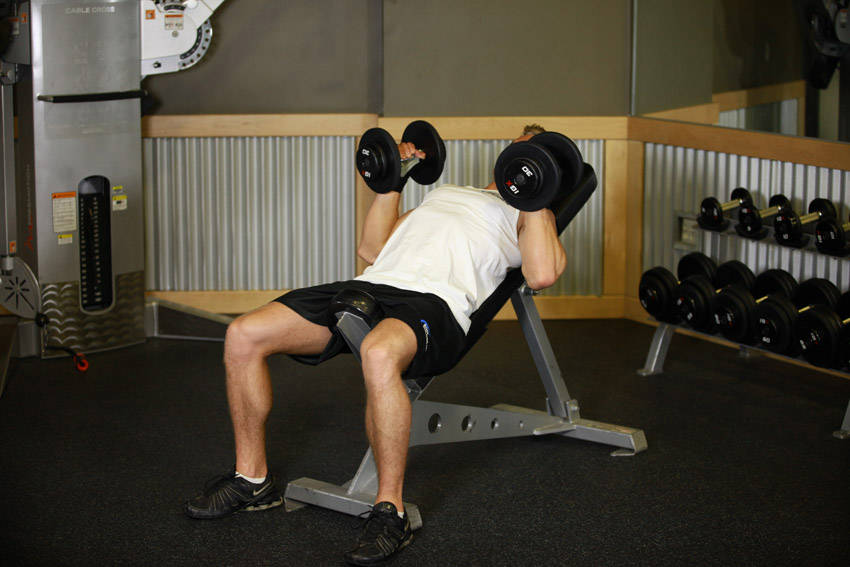 Incline Dumbbell Bench With Palms Facing In image
