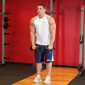 Standing Dumbbell Straight-Arm Front Delt Raise Above Head