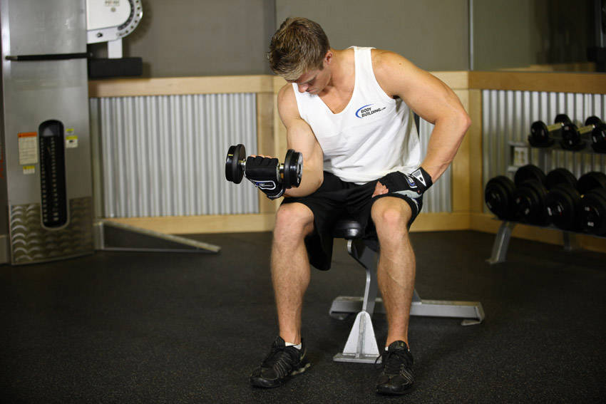 Seated One-Arm Dumbbell Palms-Up Wrist Curl image
