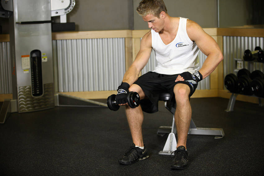 Seated One Arm Dumbbell Palms Down Wrist Curl Exercise Guide And Video