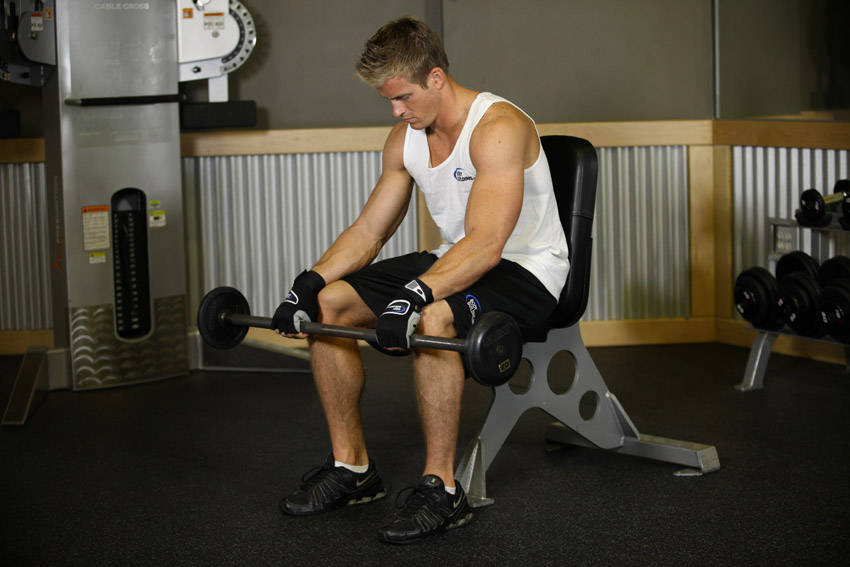 Seated Palms-Down Barbell Wrist Curl image