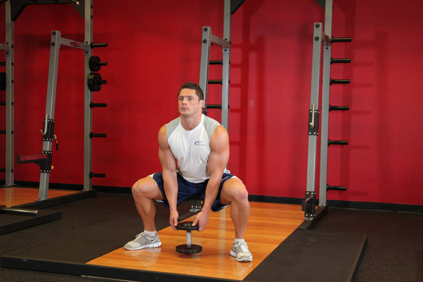 Plie Dumbbell Squat Exercise Guide and Video
