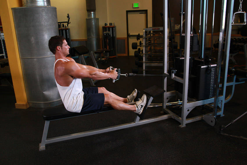 seated cable row without machine