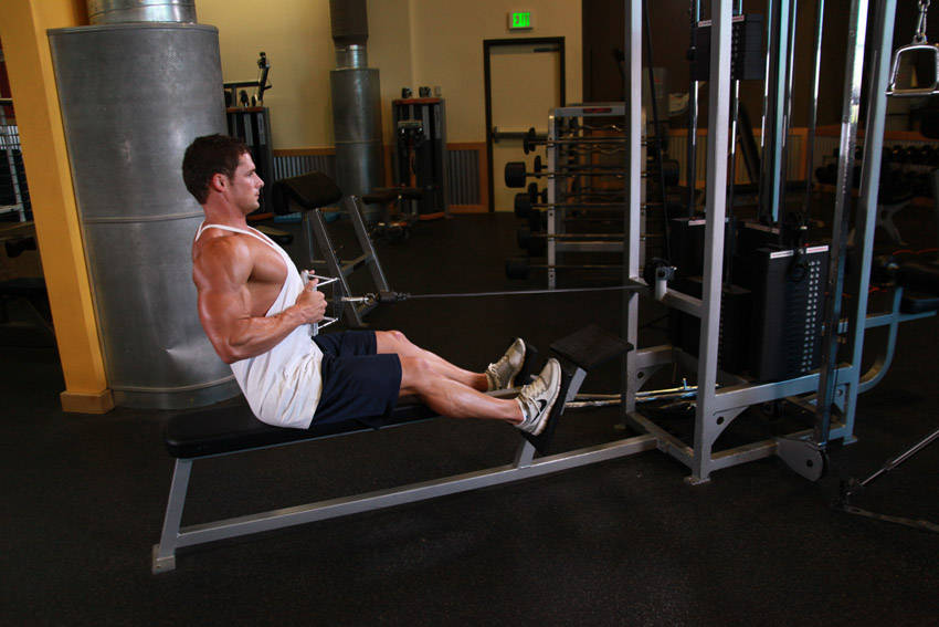 Seated Cable Rows Exercise Guide and Video