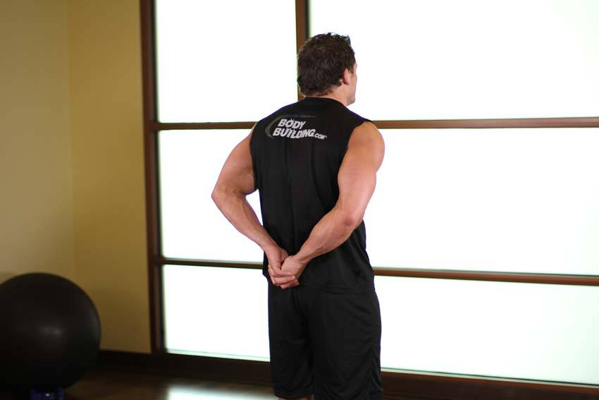 Standing Biceps Stretch Exercise Guide and Video