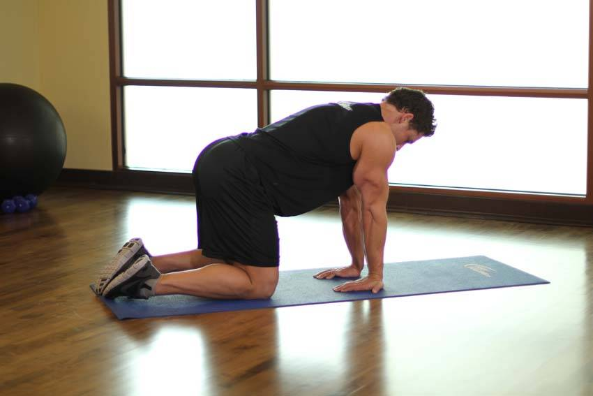 Kneeling Forearm Stretch image