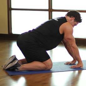 Kneeling Forearm Stretch